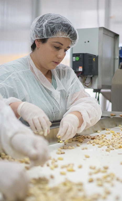 Operaria seleccionando pistachos
